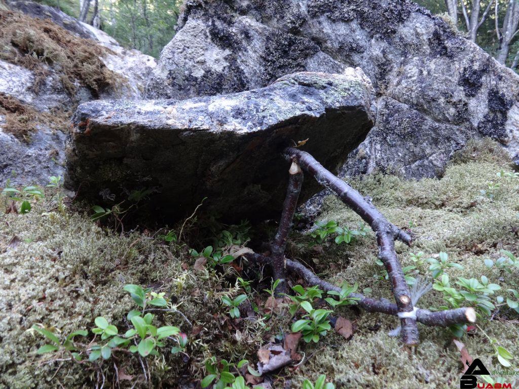 Steinfalle im Wald