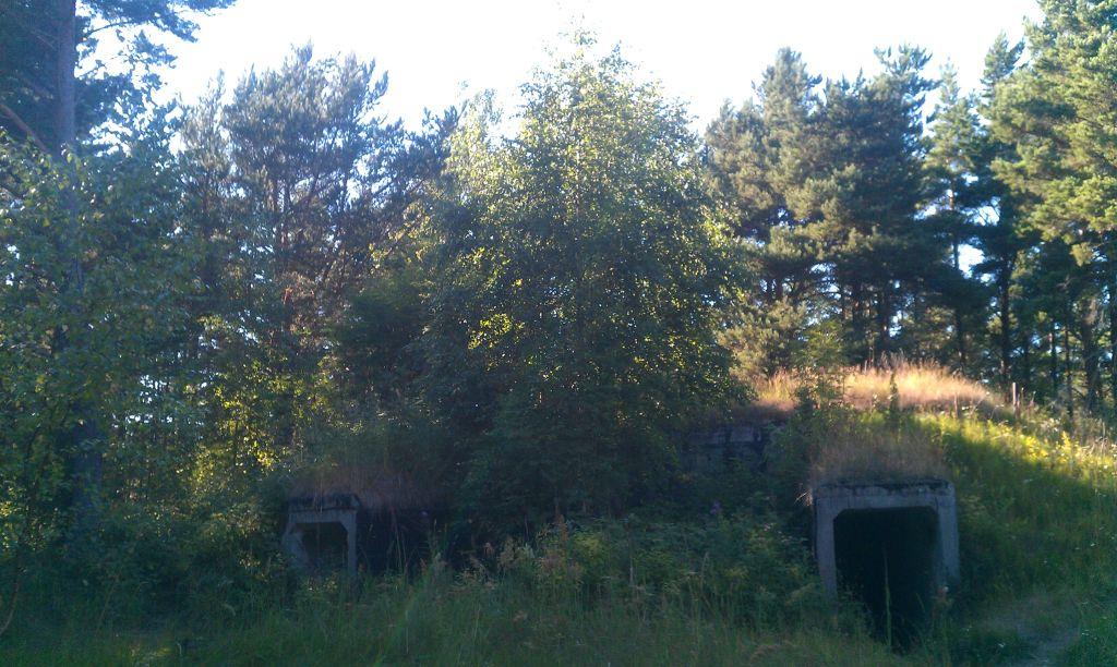 Bunker aus dem zweiten Weltkrieg in Estland (c) Christina Burkhardt
