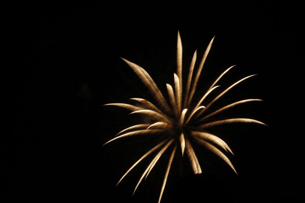 Feuerwerk am Japantag in Düsseldorf (c) Pascal Nitsche