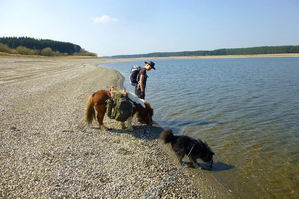 Sarah von verwandert.de mit Pony und Hund am Wasser