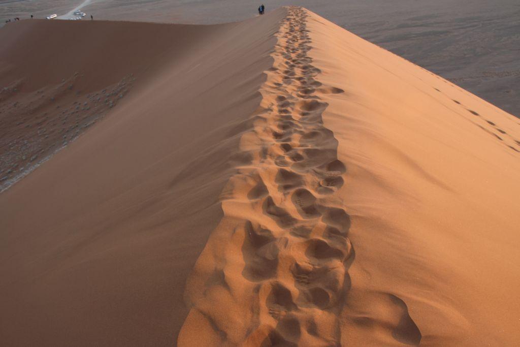 Namib Wüste (c) Lynn Benda